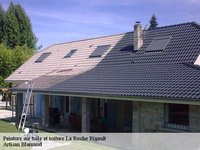 Peinture Sur Tuile Et Toiture à La Roche Rigault Tél 0519710548